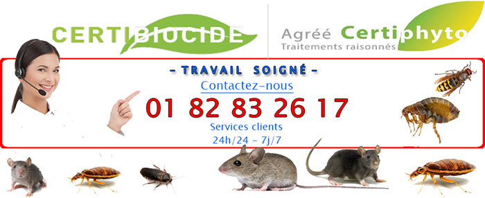 Insectes Montrouge
